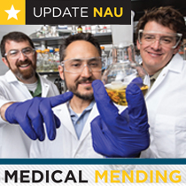 Medical mending: Tissue engineering to heal wounds